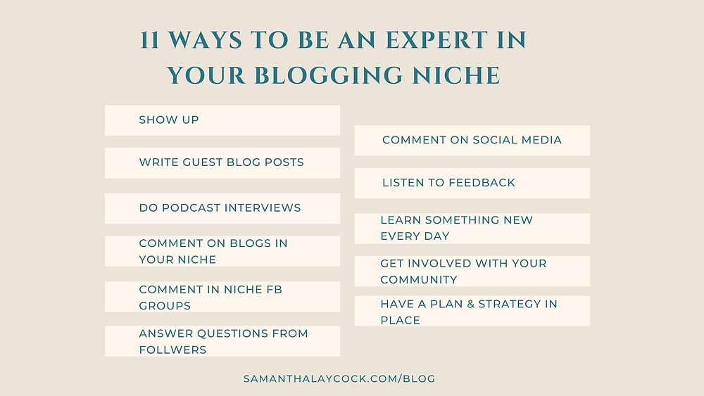 11 ways to be seen as an expert in your blogging niche
