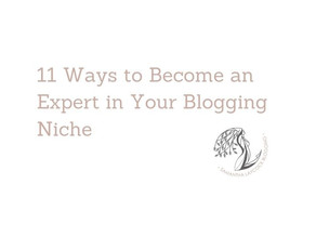 11 Ways to Become an Expert in Your Blogging Niche
