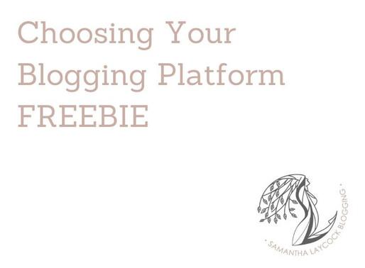 Choosing Your Blogging Platform FREEBIE