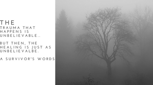 A bare tree in a foggy forest.