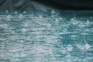Vandet i regnvandsbassinet i September og Oktober.