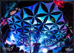 gBug - Blue Canopy