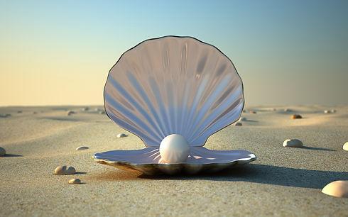 FreeGreatPicture.com-53487-beach-clam-pe