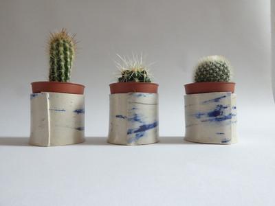 Mini Cacti Planter