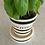 Thumbnail: Black and White Plant Pot