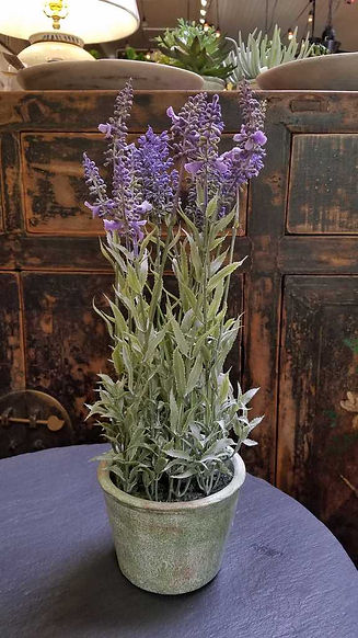 AS_Lavender_LFL017-LV.jpg
