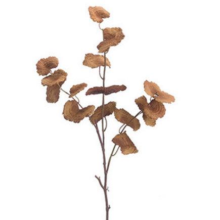 Mushroom Spray Stem
