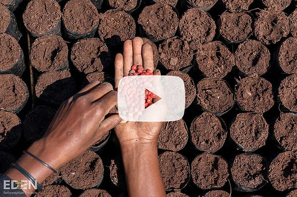 video-youtube.jpg