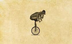 Flea Unicycle
