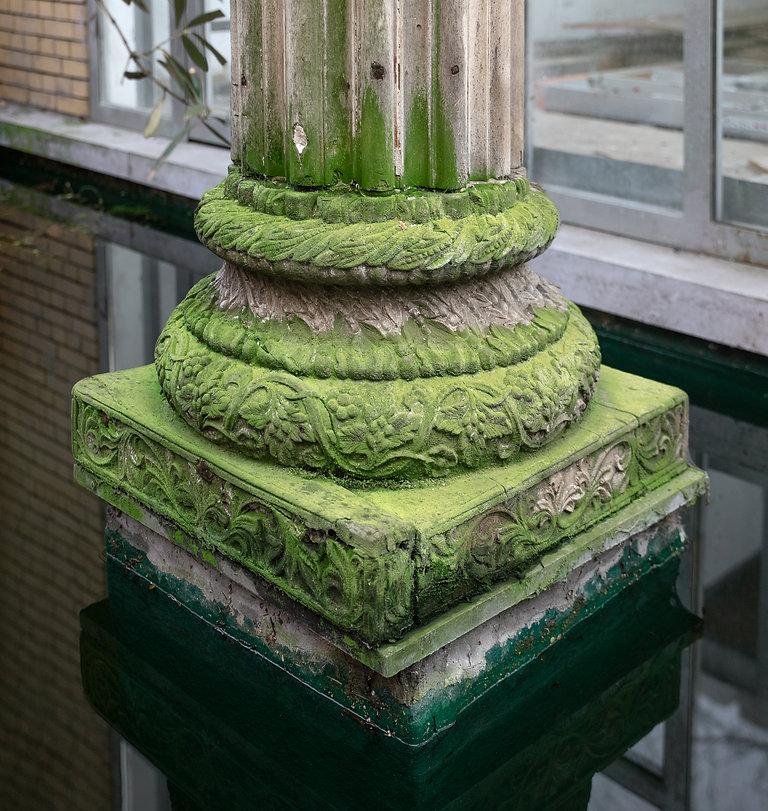 Untitled (Moss).jpg