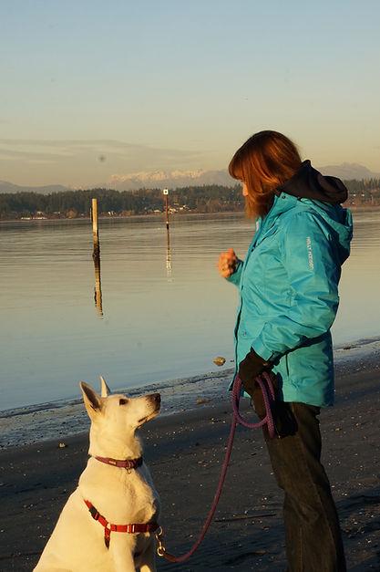 Bonnie uses positive reward training at Ocean Park Dog Training.