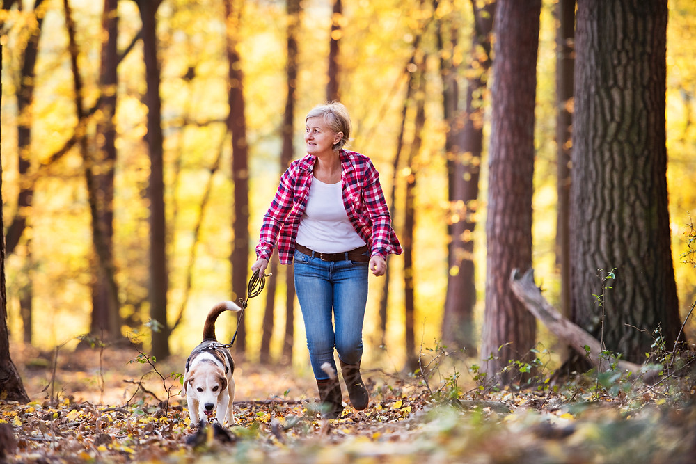 Woman enjoys sniffing walk with her dog.