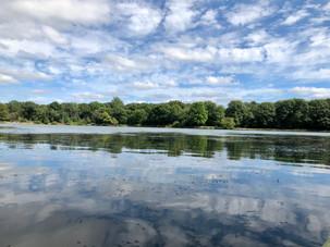 Reflections, Herrick Lake, Wheaton, IL
