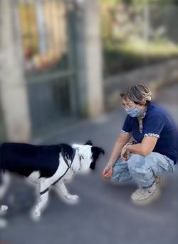 Educateur_canin_lyon_-_connexion_canine_lyon-removebg-preview