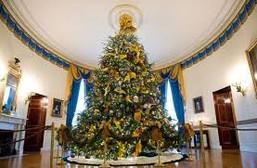 white house obama douglas fir.jpg