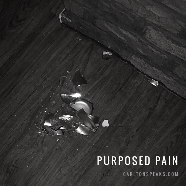 Purposed Pain
