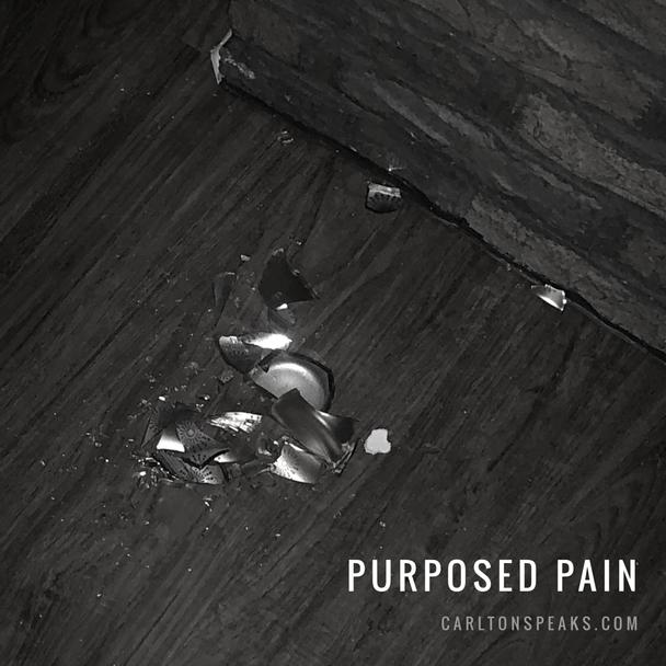 Purposed Pain