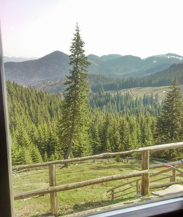 If you can get up every morning with a view like this - Enjoying the Spring Sun - window with a view