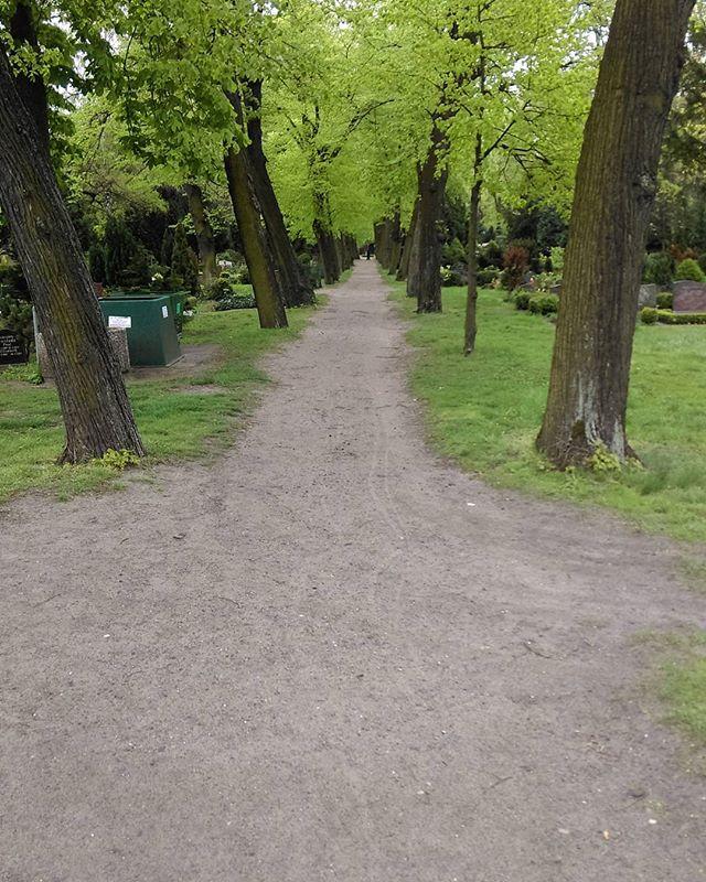 Long Nature walks - Berlin