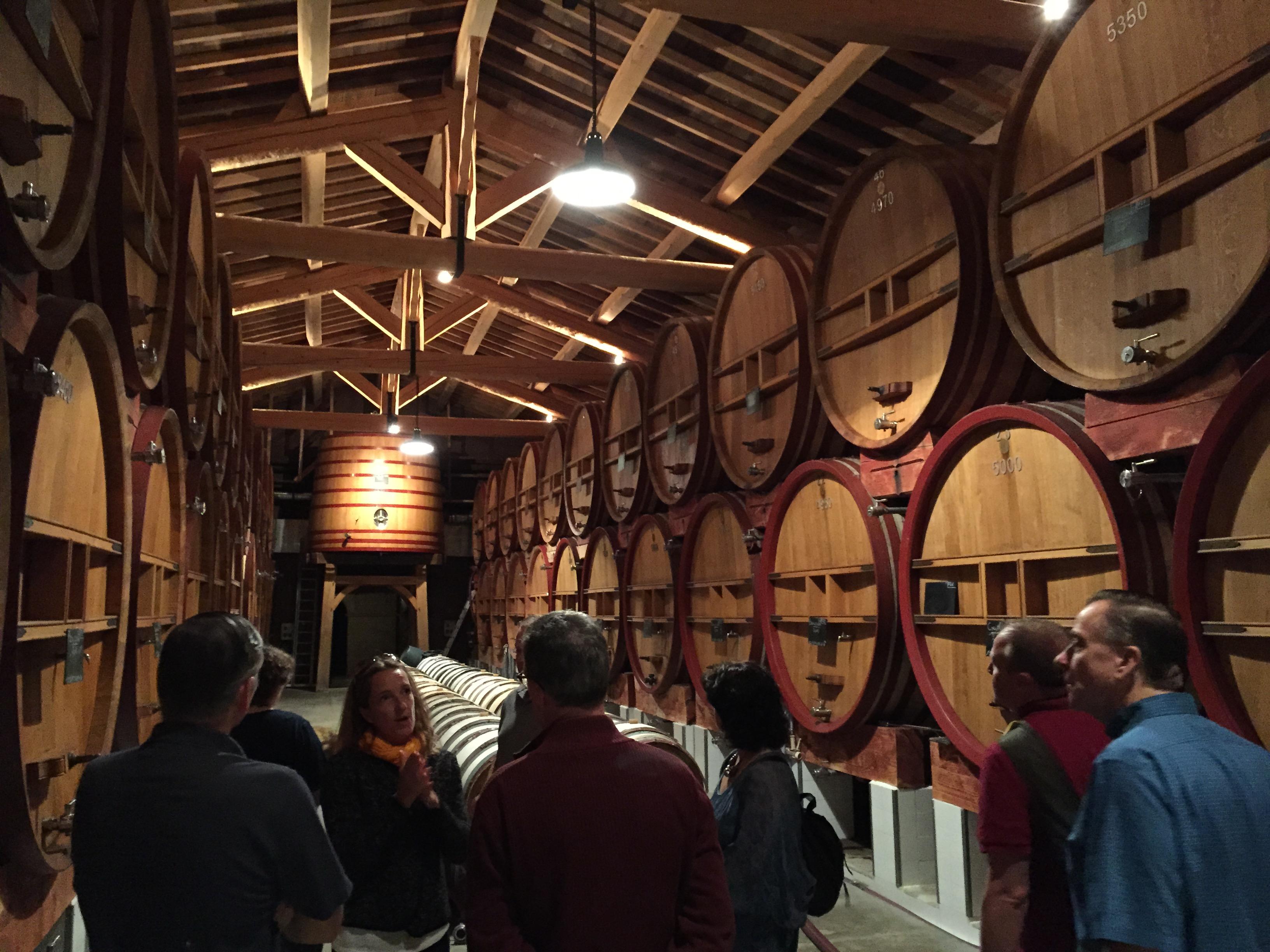 Vineyard cellar visit