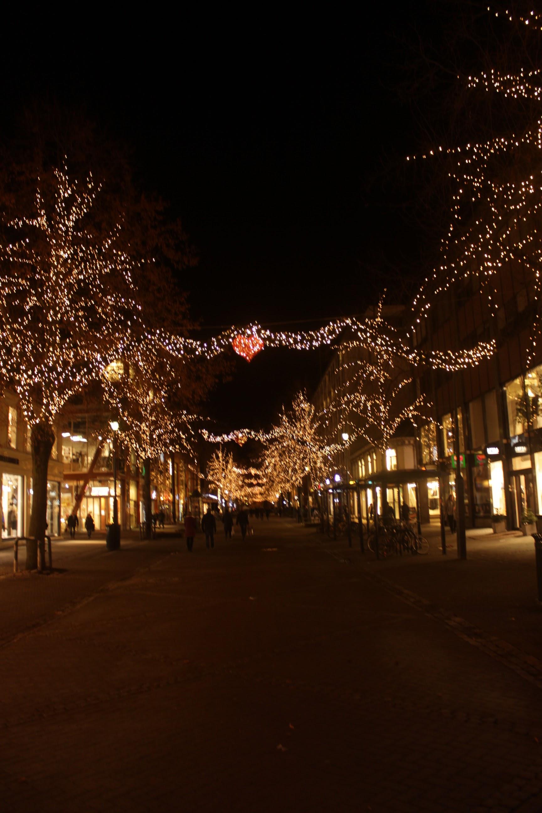 Night Walks Trondheim