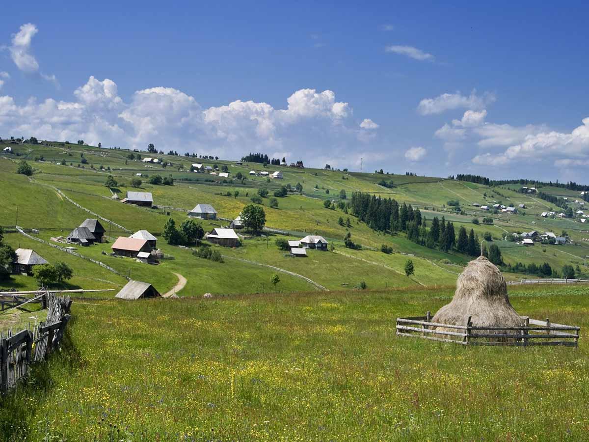 Apuseni Village