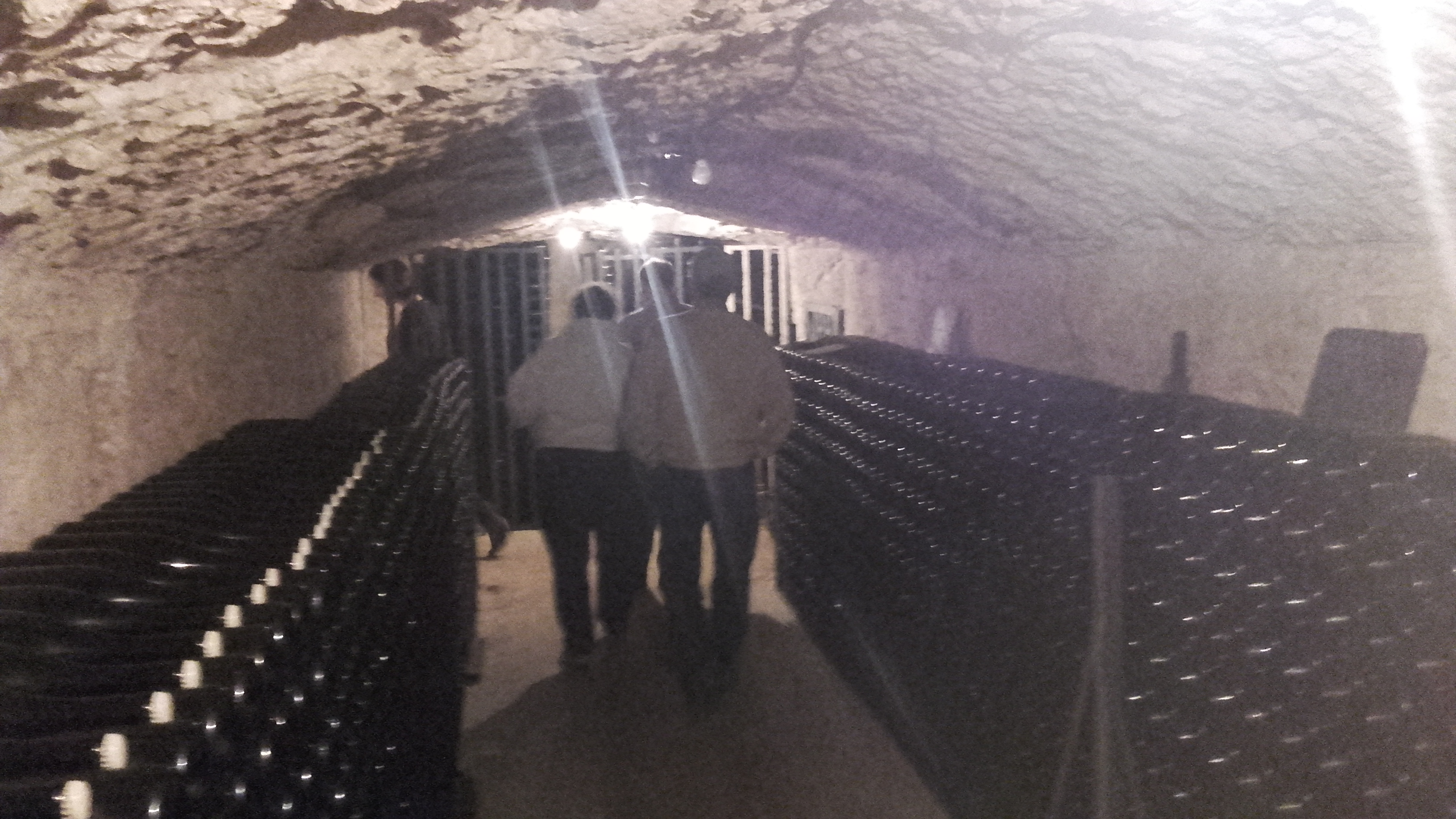 Emerging from a wine cellar