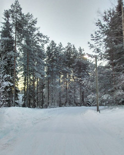 When you start missing snow - Long walks Lapland