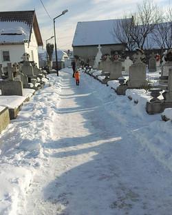 Cemetery Walks I - Zarnesti