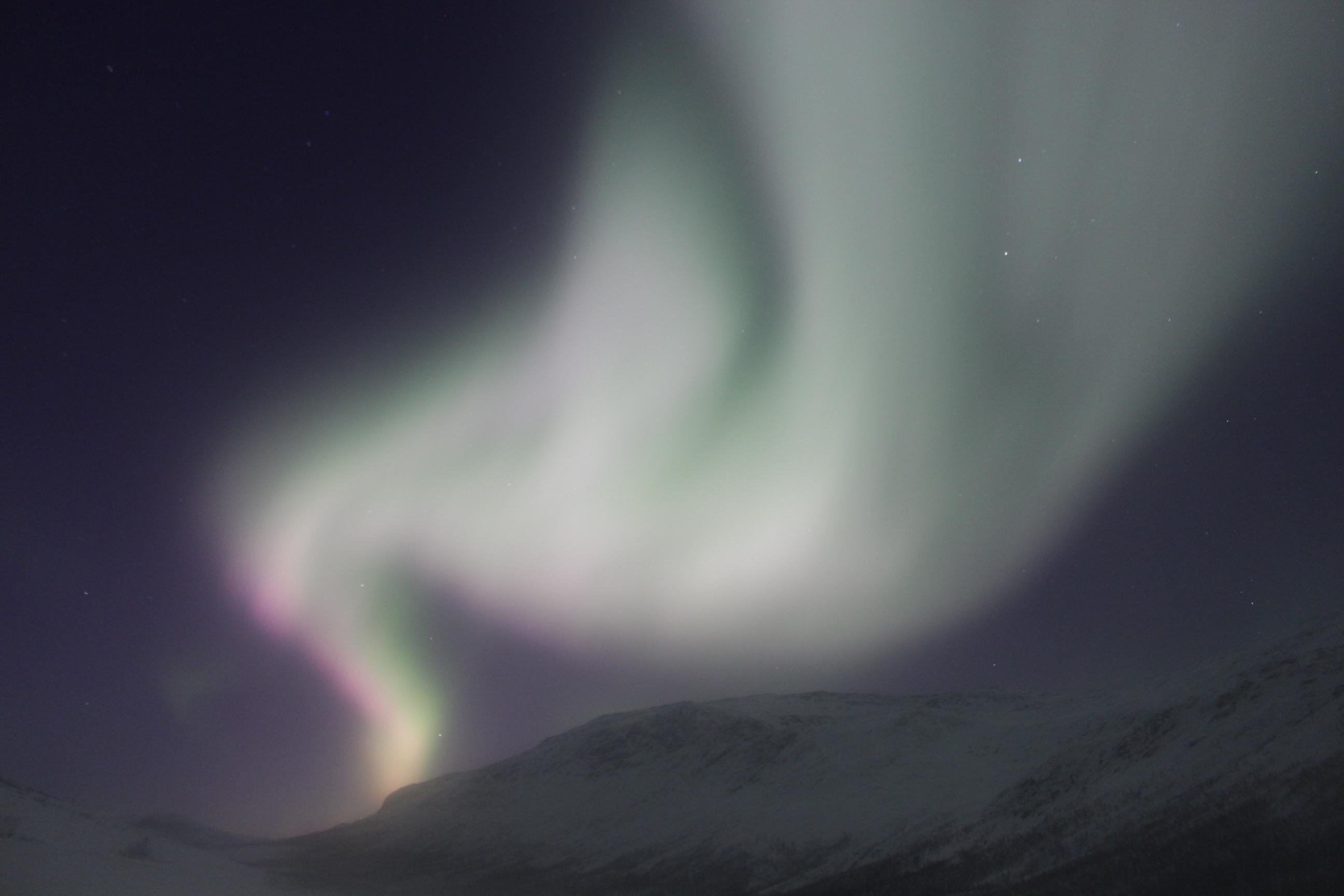 Northern Light - I