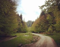 Long Walks - Piatra Craiului National Park
