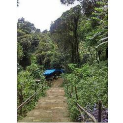 Nature walks - Nohet Village , Meghalaya_._._._