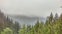 Nature _#BackpackEurope #BackpackRomania #exploretransylvania #Carpathians #Instacarpathian #Brasovc