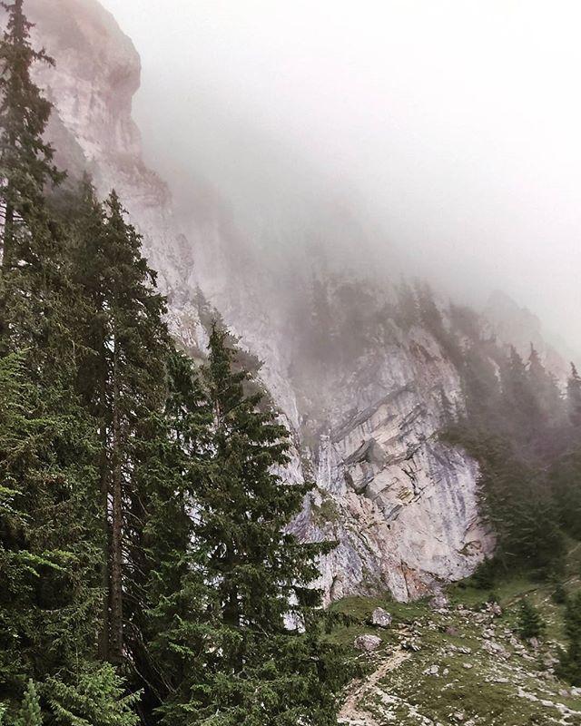 Nature walks__#BackpackEurope #BackpackRomania #exploretransylvania #Carpathians #Instacarpathian #B