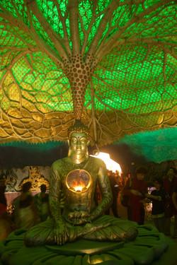 Lord Buddha Knowledge Theme