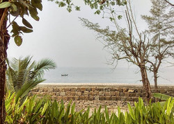Kochi mornings - Peaceful & Natural