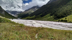 Valley of flowers 8
