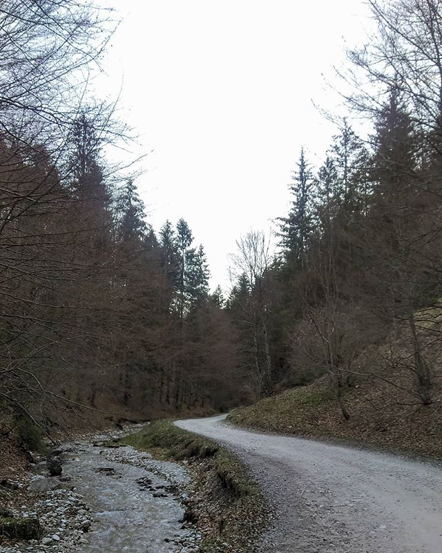 _Nature Walks__._._._