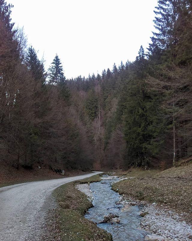 Nature Walks - II_._
