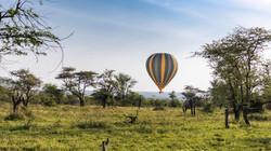 MP-hot-air-balloon-safari-866x487