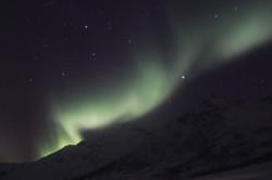 Northern Light - II