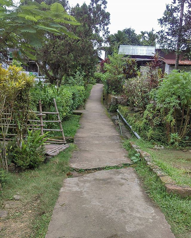 Nature walks in Mawlynnong Village. Very famously known as Asia cleanest village