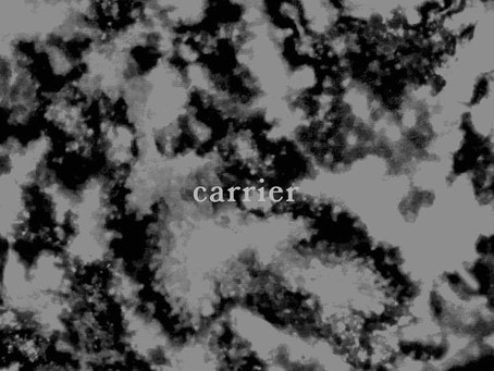 EP Review: Eyre Llew & In the endless zanhyang we are  – 'Carrier'