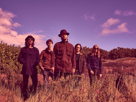 The Coral – Distance Inbetween – Review