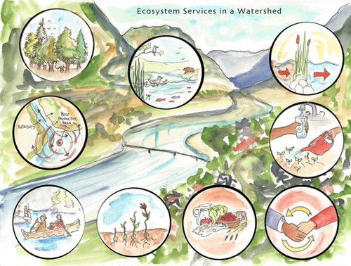 Ecosystems Services in a Watershed