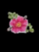 a3a7aae9-53cd-457d-9fbc-0e48b89a462f_edi
