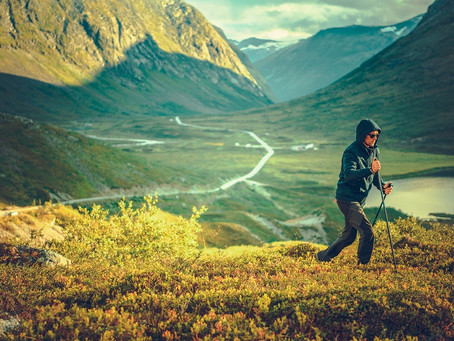 What Nordic walking poles can teach us about one of the most profound business dilemmas today