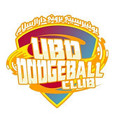dodgeball%20logo_edited.jpg