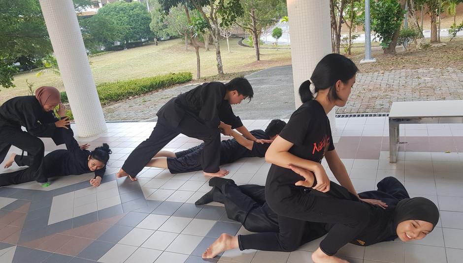 Armlock Combat Training