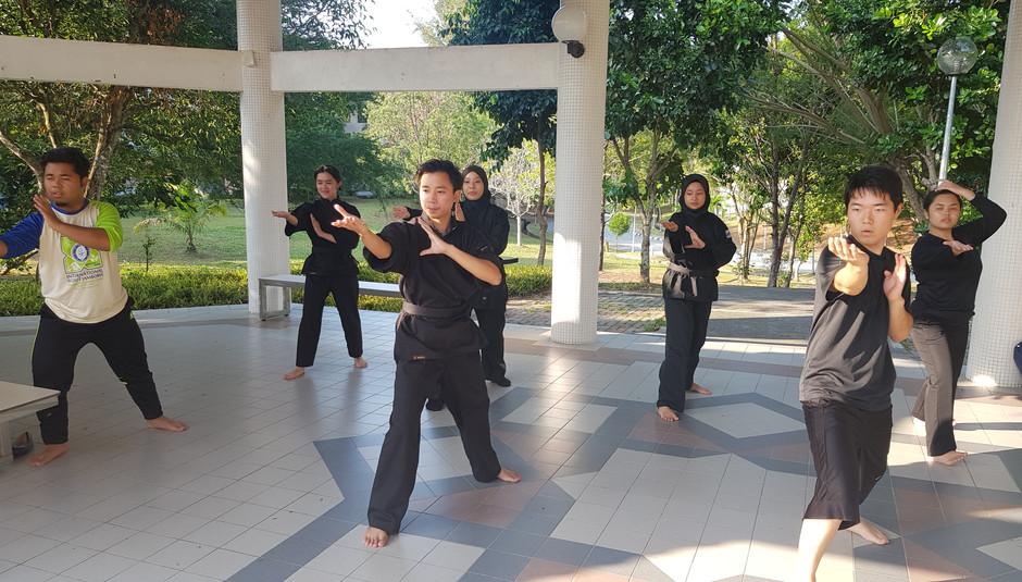 Elbow Lock Training